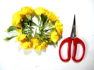 Шаг 3. Делим кустовую розу на соцветия