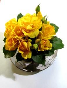 Розы кустовые в чаше